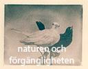 naturen_ikon
