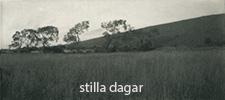 Still-dagar_ikon